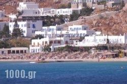 Pelagos Studios in Platys Gialos, Mykonos, Cyclades Islands