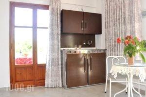 Villa Flouri_lowest prices_in_Villa_Crete_Heraklion_Malia