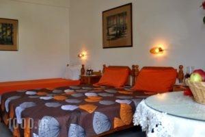 Villa Flouri_holidays_in_Villa_Crete_Heraklion_Malia