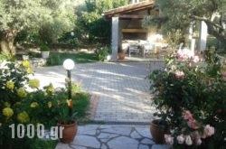 Danai in Lefkada Rest Areas, Lefkada, Ionian Islands