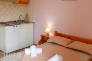 Stamoulis Apartments_holidays_in_Apartment_Ionian Islands_Kefalonia_Kefalonia'st Areas