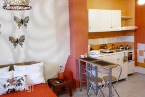 Manthiata Studios_best deals_Hotel_Ionian Islands_Lefkada_Lefkada Rest Areas