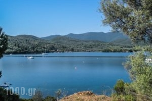 Drivas Apartments_travel_packages_in_Central Greece_Evia_Istiea