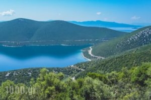 Drivas Apartments_lowest prices_in_Apartment_Central Greece_Evia_Istiea