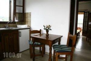 Villa Helen's Apartments_accommodation_in_Villa_Ionian Islands_Corfu_Arillas