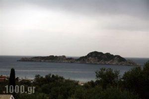 Villa Helen's Apartments_holidays_in_Villa_Ionian Islands_Corfu_Arillas