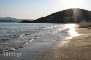 Margaret of Naxos_best prices_in_Hotel_Cyclades Islands_Naxos_Naxos Chora