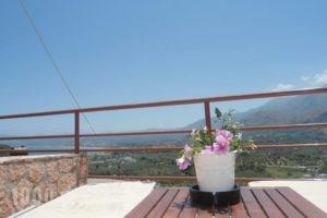 Aloe Villa_best deals_Villa_Crete_Chania_Sfakia