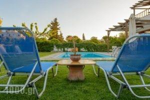 Villa Muse_holidays_in_Villa_Crete_Heraklion_Tymbaki