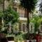 Oasis Apartments_lowest prices_in_Apartment_Peloponesse_Argolida_Tolo
