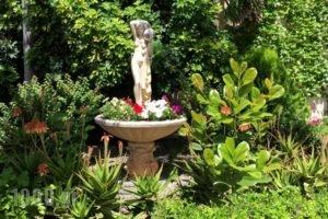 Oasis Apartments_best prices_in_Apartment_Peloponesse_Argolida_Tolo
