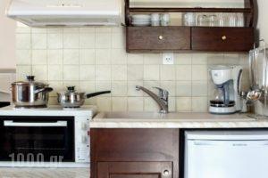 Aposperitis  Apartments_holidays_in_Apartment_Crete_Rethymnon_Mylopotamos