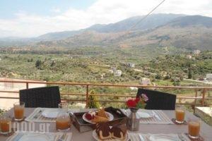 Aloe Villa_travel_packages_in_Crete_Chania_Sfakia