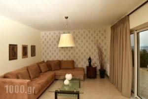 Villa Merika_lowest prices_in_Villa_Peloponesse_Arcadia_Xiropigado