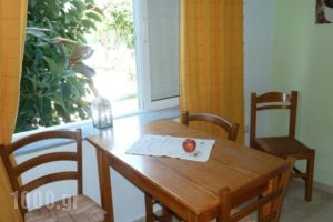 Seashell Apartments_best deals_Apartment_Crete_Chania_Platanias