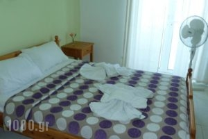 Seashell Apartments_best prices_in_Apartment_Crete_Chania_Platanias