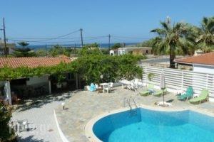 Seashell Apartments_holidays_in_Apartment_Crete_Chania_Platanias