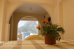 Acropolis Hotel_lowest prices_in_Hotel_Dodekanessos Islands_Kalimnos_Kalimnos Rest Areas
