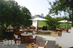Kipos Studios in Agia Anna, Naxos, Cyclades Islands