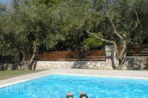 Adamas Luxury Stone Villas_holidays_in_Villa_Ionian Islands_Zakinthos_Laganas