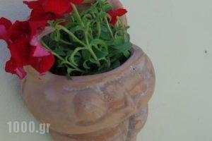 Ersi Villas_lowest prices_in_Villa_Cyclades Islands_Sandorini_Fira