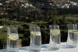 Edem Suites_accommodation_in_Hotel_Cyclades Islands_Andros_Andros City