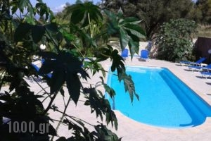 Sami View_holidays_in_Hotel_Ionian Islands_Kefalonia_Fiskardo