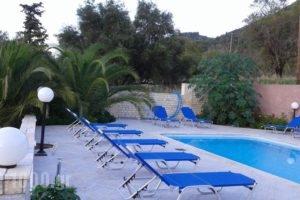 Sami View_best deals_Hotel_Ionian Islands_Kefalonia_Fiskardo