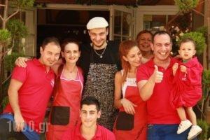 Hotel White Rose Beach_accommodation_in_Hotel_Macedonia_Pieria_Olympiaki Akti