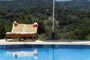 Aposperitis  Apartments_accommodation_in_Apartment_Crete_Rethymnon_Mylopotamos