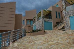 Ouzo Villas_accommodation_in_Villa_Aegean Islands_Lesvos_Plomari