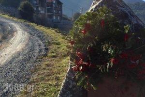 Chalet Azanias_holidays_in_Hotel_Peloponesse_Achaia_Kalavryta