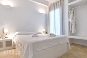 Vincenzo Family Rooms_lowest prices_in_Room_Cyclades Islands_Tinos_Tinosora