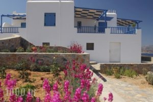 Villa Meltemi_travel_packages_in_Cyclades Islands_Iraklia_Iraklia Chora