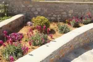 Villa Meltemi_holidays_in_Villa_Cyclades Islands_Iraklia_Iraklia Chora
