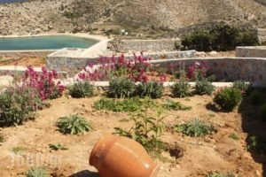 Villa Meltemi_best prices_in_Villa_Cyclades Islands_Iraklia_Iraklia Chora