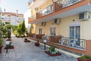 Oscar_travel_packages_in_Macedonia_Halkidiki_Kassandreia