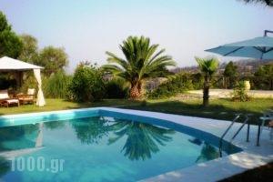 Villa Flores_holidays_in_Villa_Macedonia_Halkidiki_Kassandreia