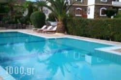 Oceanides Apartments in Sitia, Lasithi, Crete