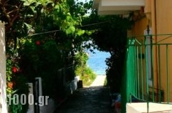 Lena Garnelli Apartments in Kassiopi, Corfu, Ionian Islands