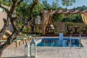 Vatia Villas_accommodation_in_Villa_Ionian Islands_Zakinthos_Zakinthos Rest Areas