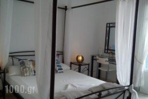 Villa Le Grand Bleu_lowest prices_in_Villa_Cyclades Islands_Amorgos_Katapola