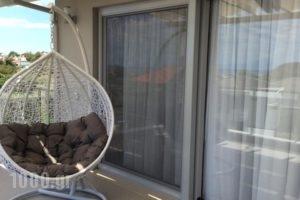 Muses Studios_best deals_Hotel_Aegean Islands_Thasos_Thasos Chora