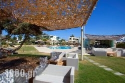 Angeliki Apartments in Naxos Rest Areas, Naxos, Cyclades Islands