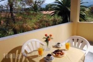 Harris Apartments_holidays_in_Apartment_Ionian Islands_Corfu_Corfu Rest Areas