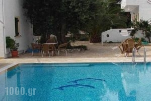 Olympia Paxos_accommodation_in_Hotel_Ionian Islands_Paxi_Paxi Rest Areas