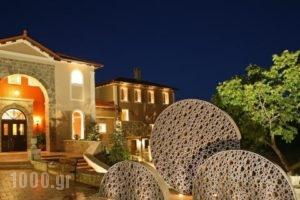 Kallisto Hotel & Suites_lowest prices_in_Hotel_Peloponesse_Arcadia_Levidi