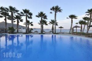 Astir Of Paros_accommodation_in_Hotel_Cyclades Islands_Paros_Paros Rest Areas