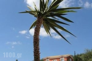 Agnanti Holiday Club_accommodation_in_Apartment_Ionian Islands_Zakinthos_Zakinthos Rest Areas