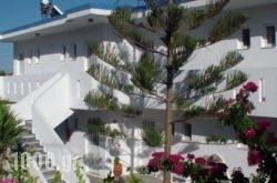 Creta Vassakis Studios in Kos Rest Areas, Kos, Dodekanessos Islands